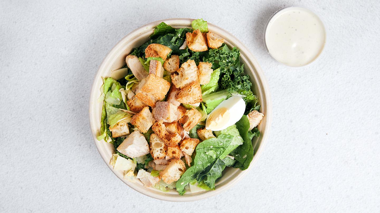 Caesar Salat - Coucou Food Market